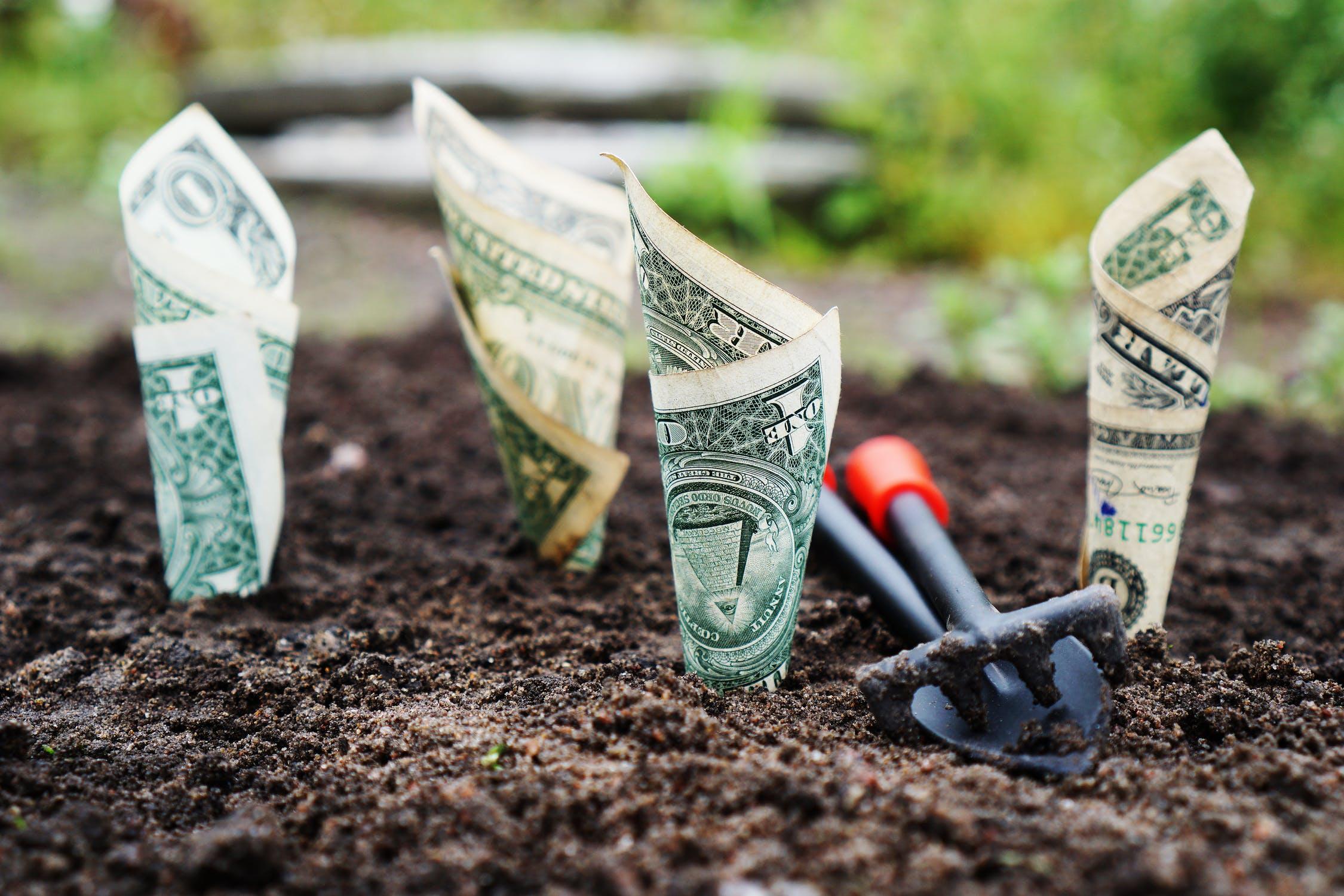 rețea suplimentară de câștig de venituri